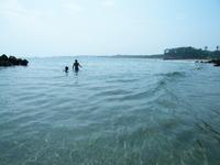 昨日も海へ!