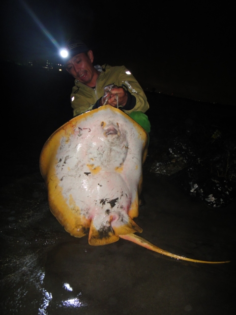 キチガイの釣り
