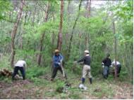 せんだい・市民の森を創る会ブログスタート