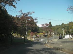 仁田谷地までの行き方(葛岡墓園正面入り口からのコース)