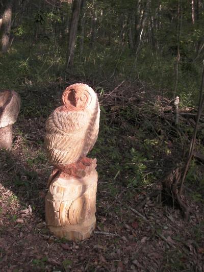 和田伸太郎さん「森のふくろう」
