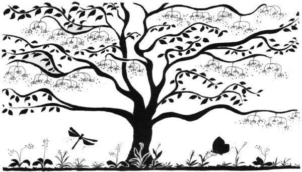 アートな森の物語が始まります