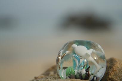 とんぼ玉 『美ら海』