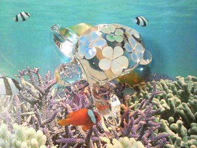とんぼ玉 『花ウミガメ』
