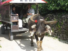 沖縄旅行記2