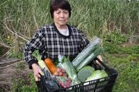 安心・安全 無農薬・有機栽培 旬野菜セットのご案内
