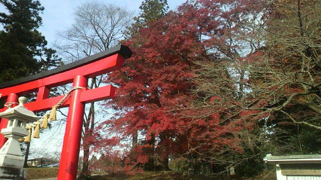 今年も・・・賀茂神社
