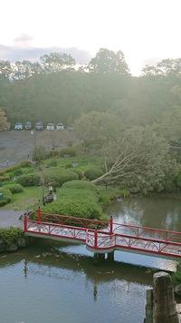 庭園の御神木が倒木