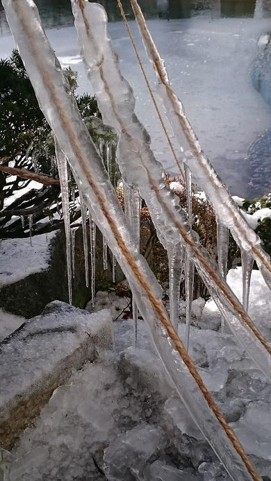 凍ったーー!!