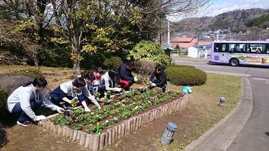 新入社員と一緒にお花を植えました!