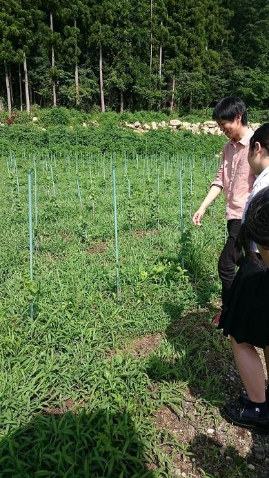 松島高校から実習生がこの夏頑張りました!