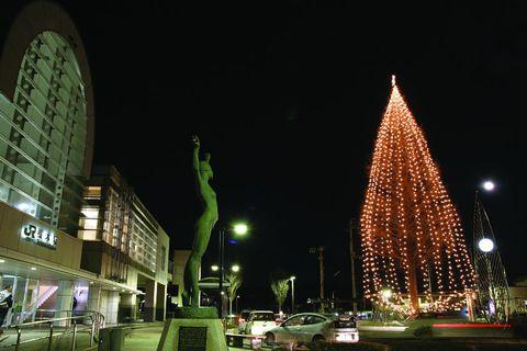 【メタセコイアの奇跡!光り輝け槻木駅】が開催されます