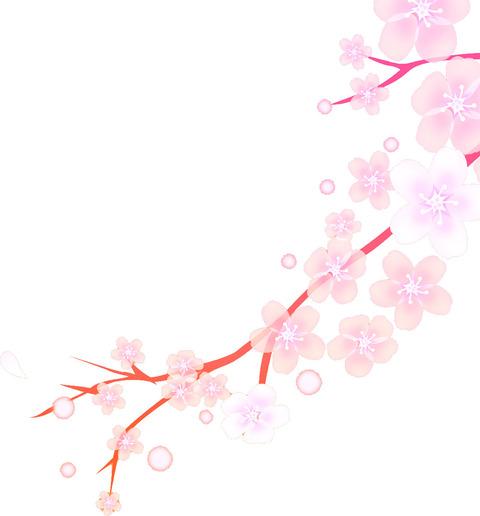 桜の開花宣言が出ました!