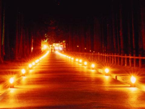 【松島紅葉ライトアップ2014】が開催されます