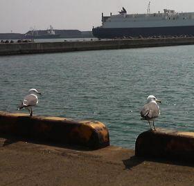 空と海・・・仙台新港