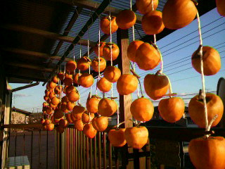 橙色のカーテン・・・干し柿