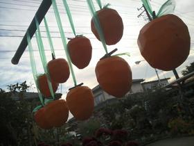 太陽と北風の恵み・・・干し柿