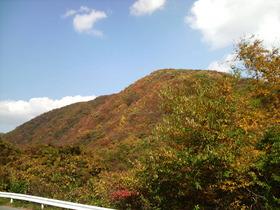 紅葉を探して・・・花山