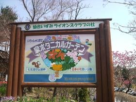 花と緑とソフトクリーム・・・泉ボタニカルガーデン