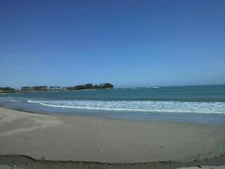 海、どこまでも紺碧(あお)く・・・海岸にて