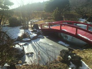 冬晴れの日・・・庭園