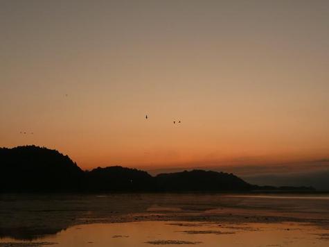 朝の伊豆沼
