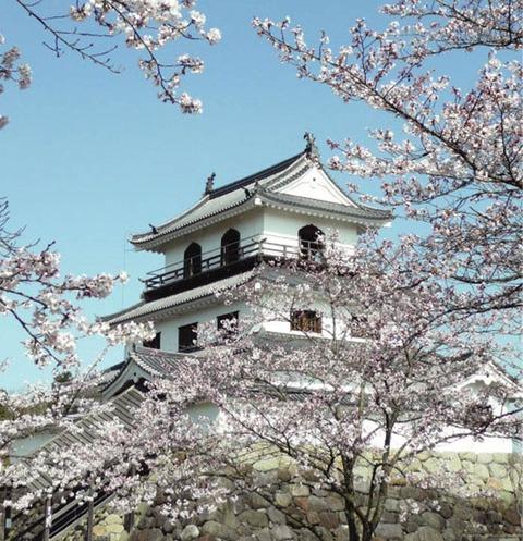 【白石城桜まつり】が開催されています