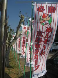 広島東洋カープ沖縄キャンプ