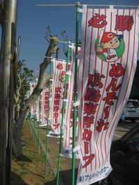 広島カープ沖縄キャンプ