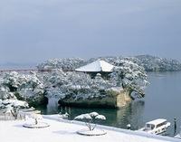 ★松島 雪景色