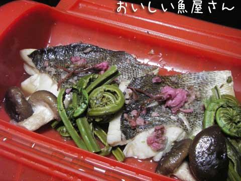 ルクエ・スチームケース第3弾♪【すずきの桜蒸し】