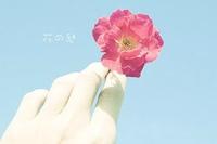指端那一朵花
