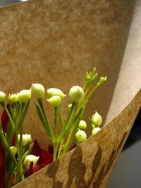 お花,名前は知らない(笑)。