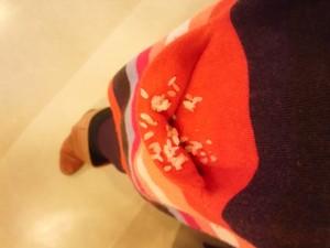 花祭り inタピオ
