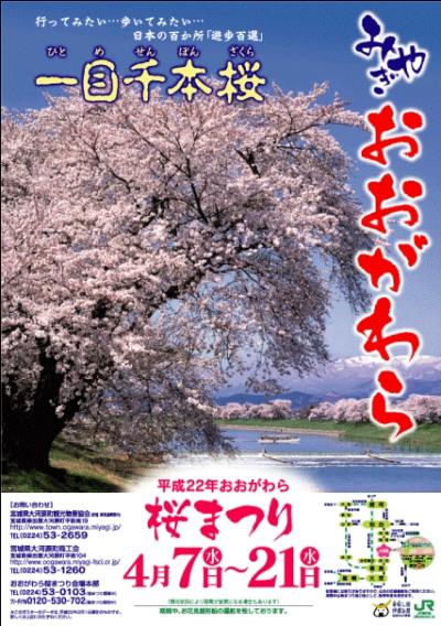 本日のおおがわら桜まつりへのむすび丸出陣は悪天候で中止に。