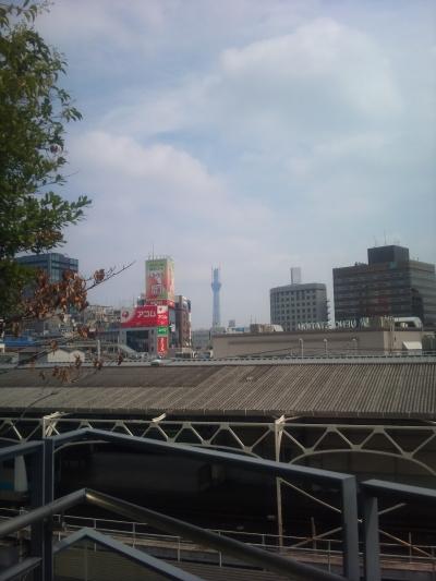 東京スカイツリーが461mに達し、日本史上最も高い建物となる