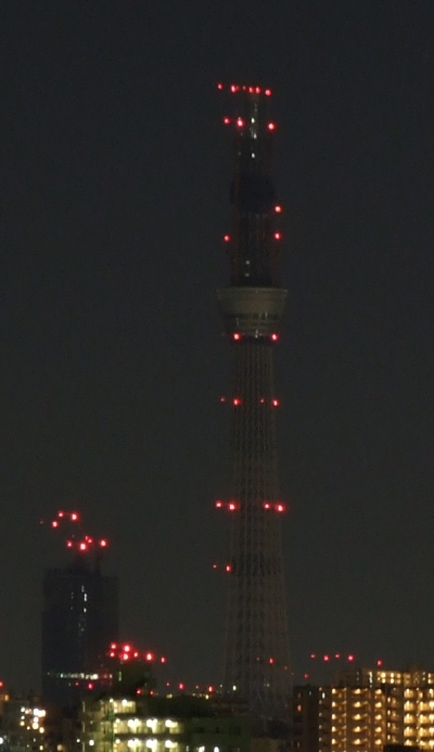明けましておめでとうございむす!今の東京タワー&スカイツリー
