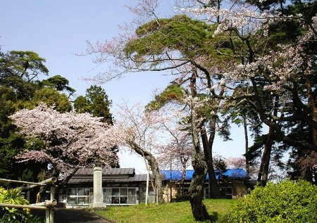 梅の宮神社
