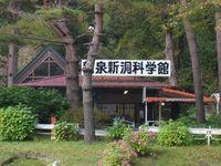 鹿児島県知名町のユリ