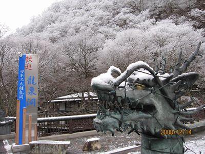 雪やコンコン!