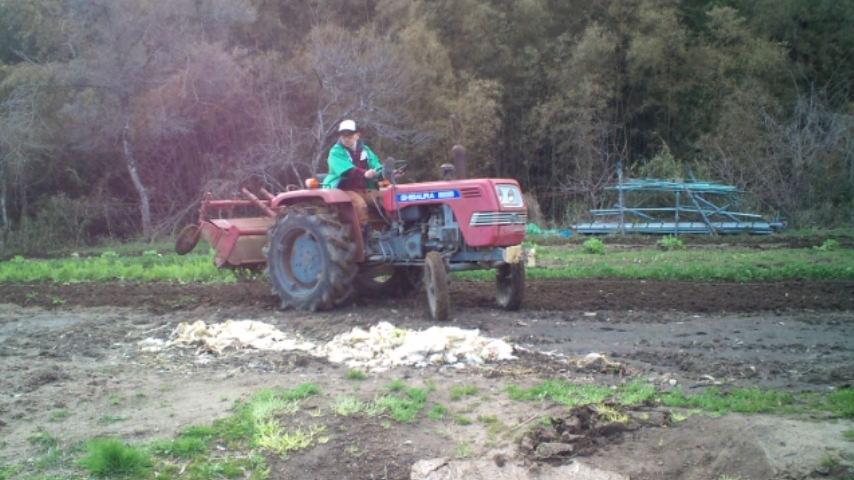 有機栽培の基礎・土作り