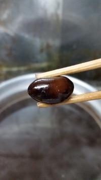 黒豆への願い‼