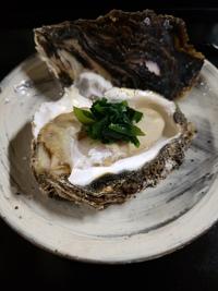 天然岩牡蠣と山菜シドケ
