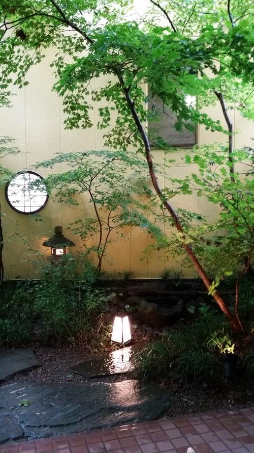 楓の庭ライトアップ