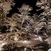 沢乙の庭ライトアップ!
