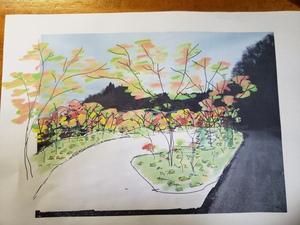 三春滝桜の子供たち‼️