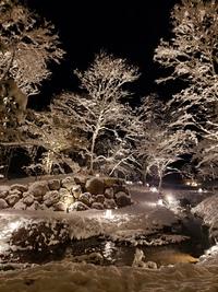 山紅葉の雪景色!