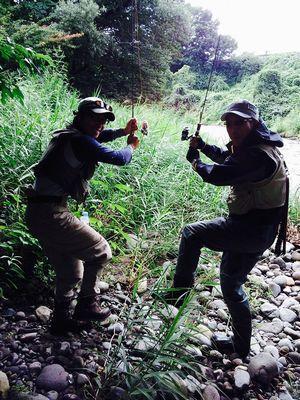 ザ・渓流 「豆と罠」
