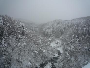樹氷橋からの眺め