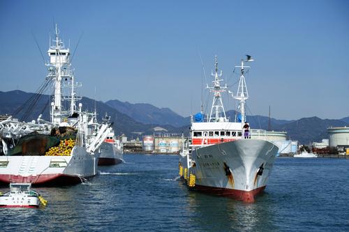 88勝栄丸が清水港に到着